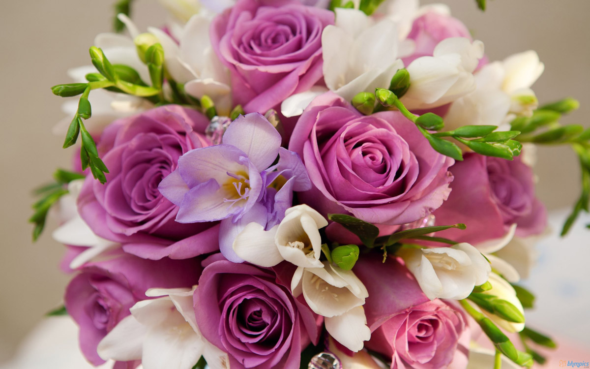 beautiful-purple-white-flowers-bouquet-660713
